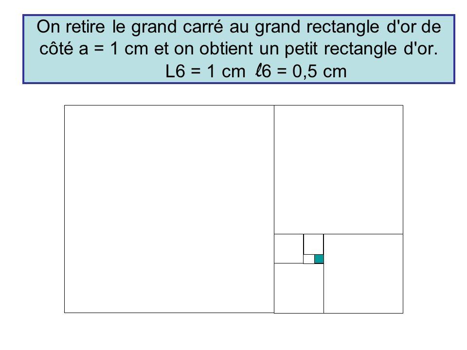 On retire le grand carré au grand rectangle d'or de côté a = 1 cm et on obtient un petit rectangle d'or. L6 = 1 cm l 6 = 0,5 cm