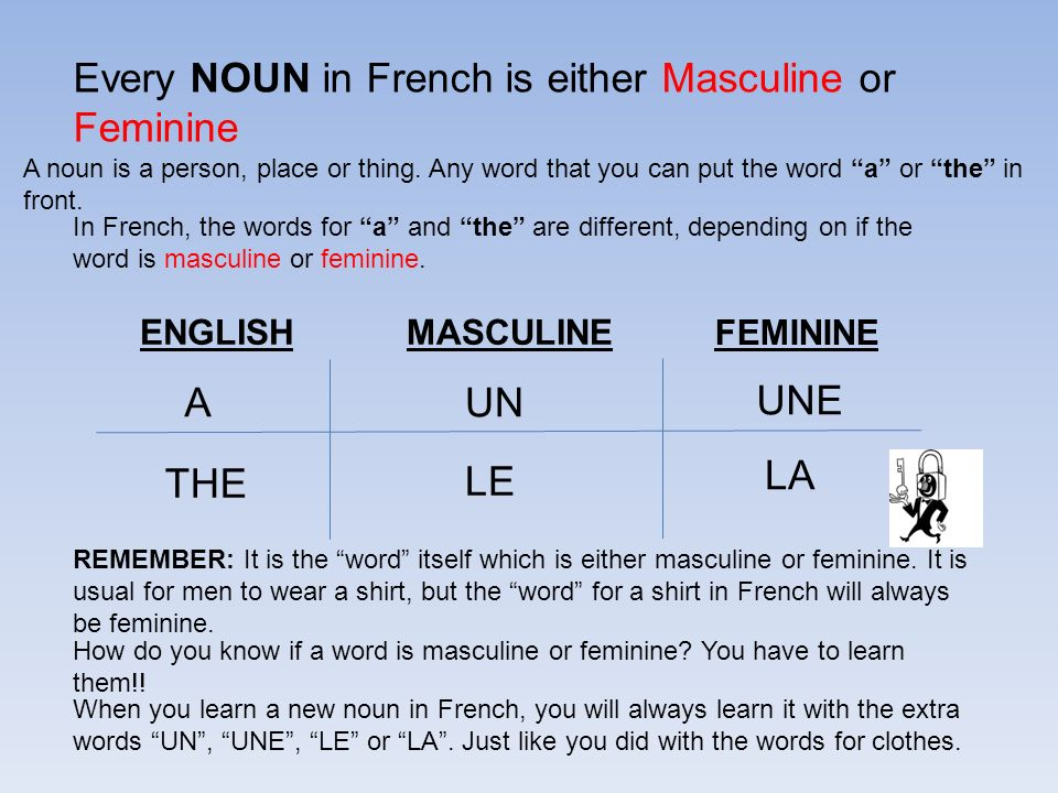 Every NOUN in French is either Masculine or Feminine A noun is a person, place or thing.