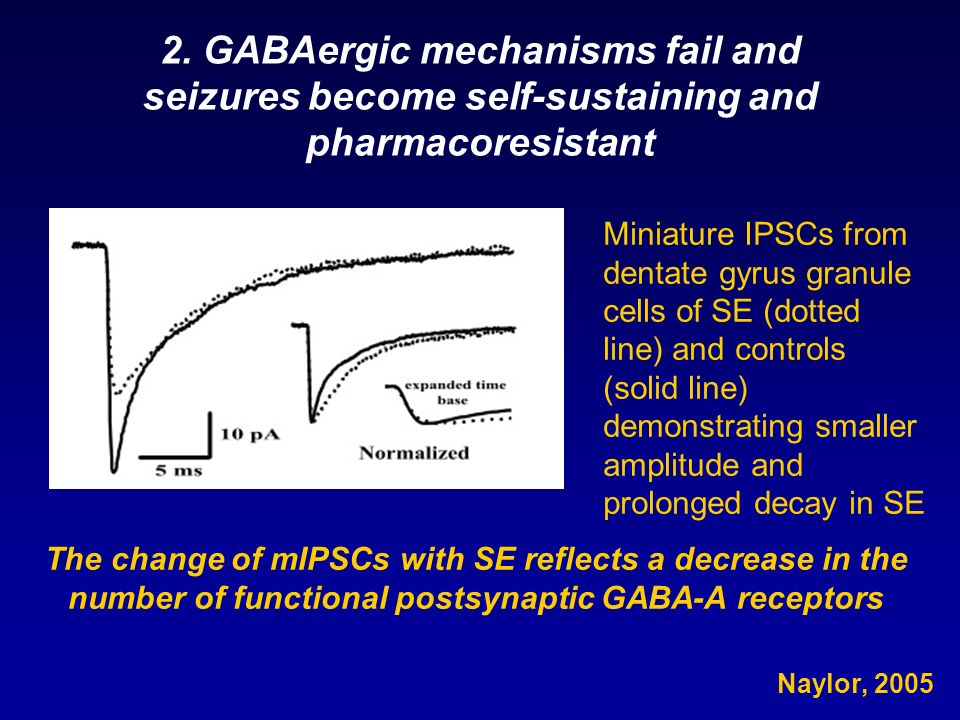 2. GABAergic mechanisms fail and seizures become self-sustaining and pharmacoresistant Miniature IPSCs from dentate gyrus granule cells of SE (dotted