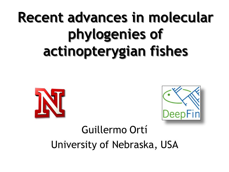 Recent advances in molecular phylogenies of actinopterygian fishes Guillermo Ortí University of Nebraska, USA