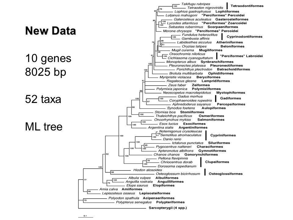 New Data 10 genes 8025 bp 52 taxa ML tree