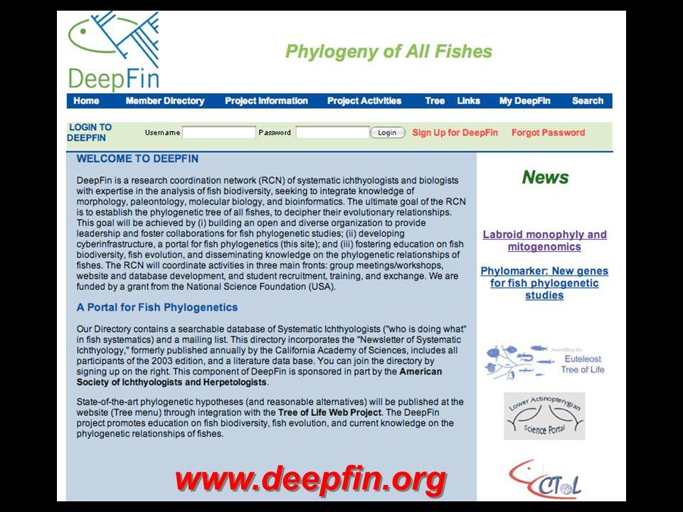 www.deepfin.org