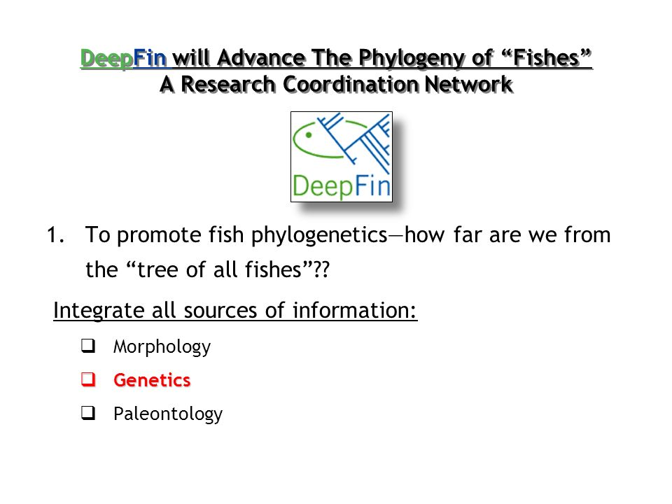 1.To promote fish phylogeneticshow far are we from the tree of all fishes .