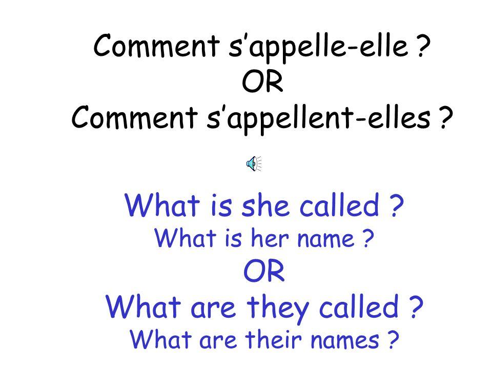 Comment sappellent tes frères ? What is your brothers names ? What is your brothers called ?