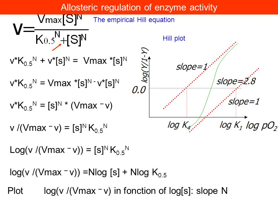 v*K 0.5 N + v*[s] N = Vmax *[s] N v*K 0.5 N = Vmax *[s] N - v*[s] N v*K 0.5 N = [s] N * (Vmax – v) v /(Vmax – v) = [s] N K 0.5 N Log(v /(Vmax – v)) =