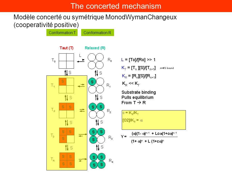 Régulation allostérique de lactivité enzymatique Modèle concerté ou symétrique MonodWymanChangeux (cooperativité positive) Conformation RConformation