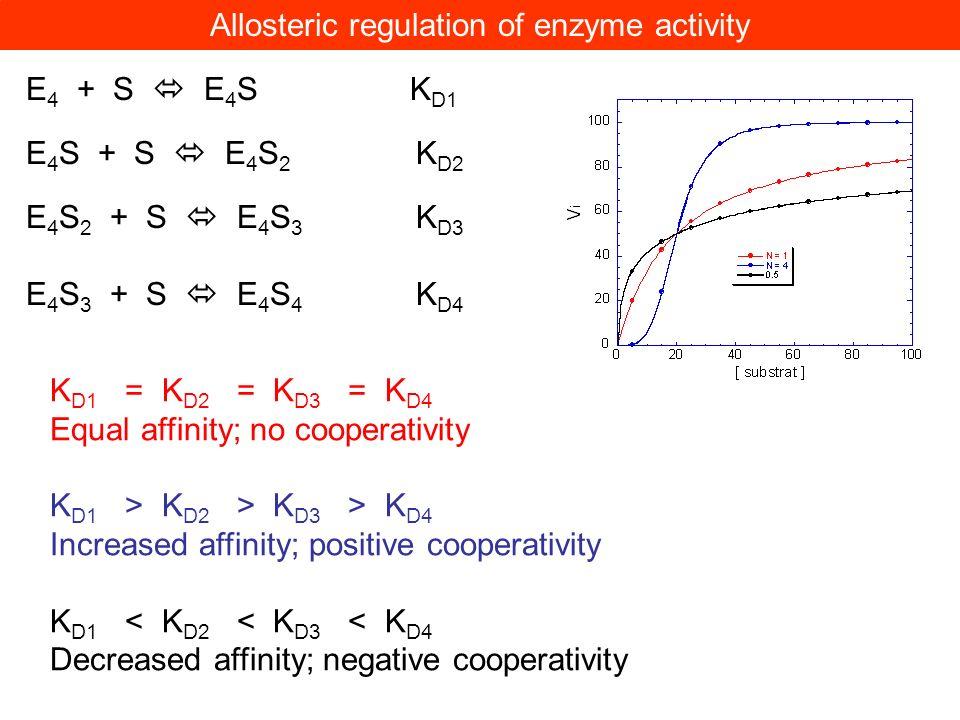 E 4 + S E 4 SK D1 E 4 S + S E 4 S 2 K D2 E 4 S 2 + S E 4 S 3 K D3 E 4 S 3 + S E 4 S 4 K D4 Allosteric regulation of enzyme activity K D1 = K D2 = K D3