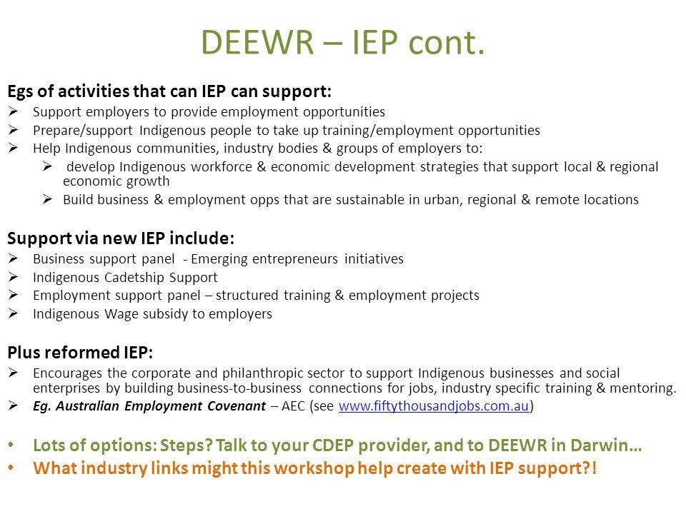 DEEWR – IEP cont.