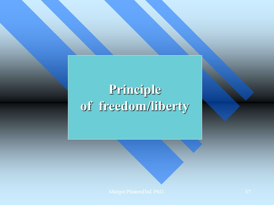 Margot Phaneuf Inf. PhD.37 Principle of freedom/liberty