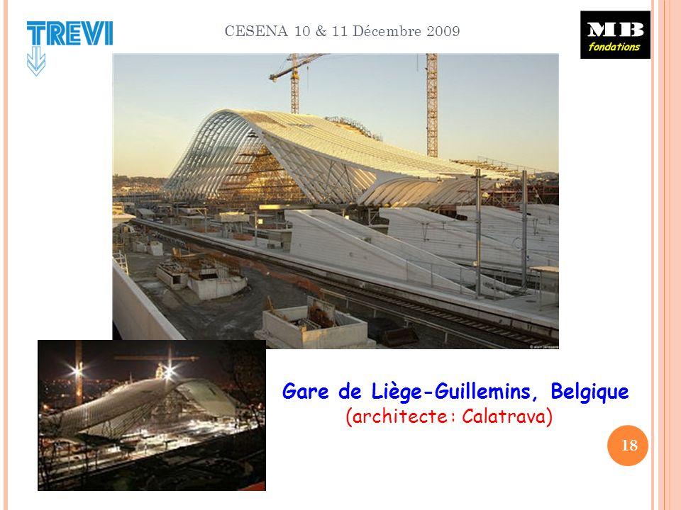 CESENA 10 & 11 Décembre 2009 18 Gare de Liège-Guillemins, Belgique (architecte : Calatrava)