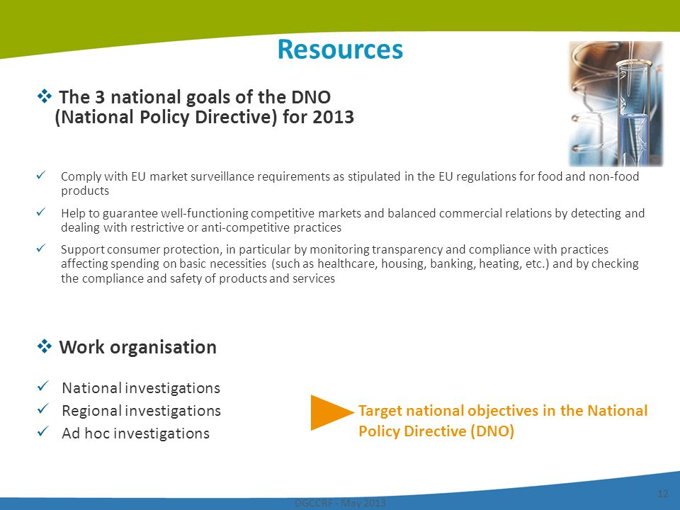 DGCCRF - May 2013 12 Resources The 3 national goals of the DNO (National Policy Directive) for 2013 Work organisation National investigations Regional