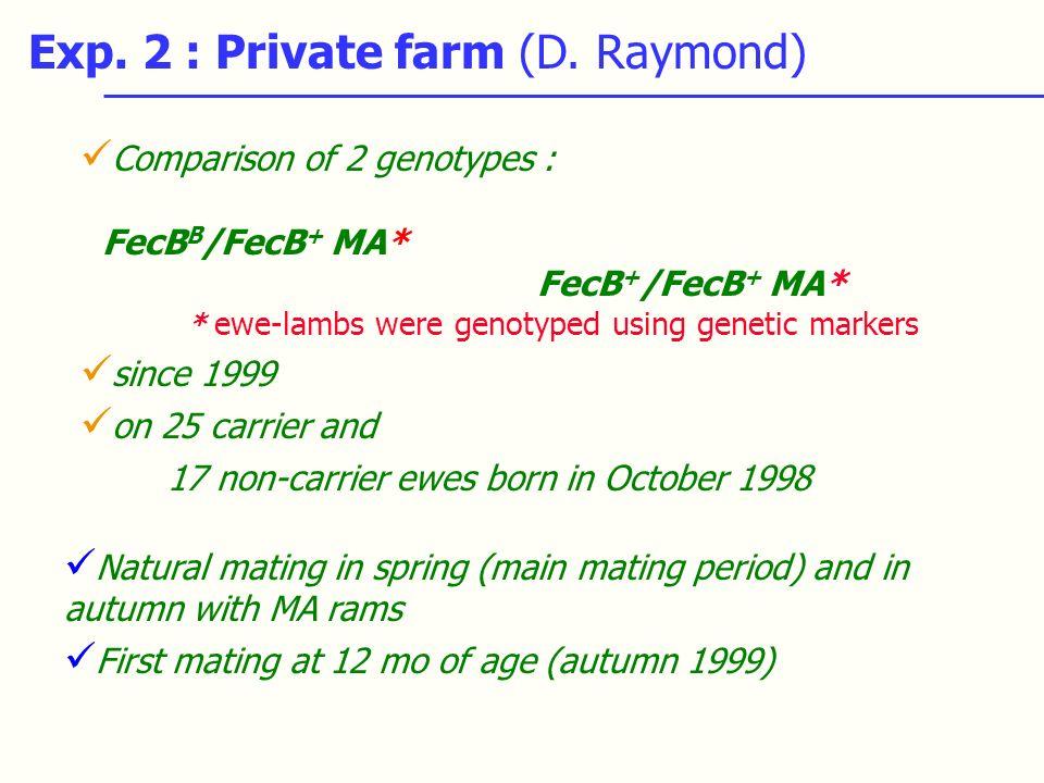 Exp. 2 : Private farm (D. Raymond) Comparison of 2 genotypes : FecB B /FecB + MA* FecB + /FecB + MA* * ewe-lambs were genotyped using genetic markers