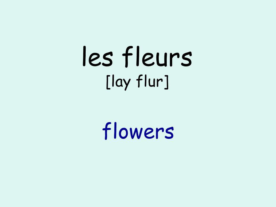 les fleurs [lay flur] flowers