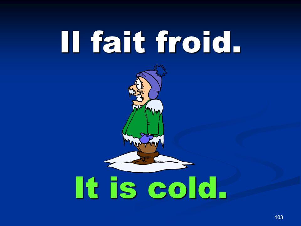 103 Il fait froid. It is cold.