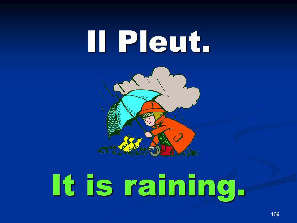 106 Il Pleut. It is raining.