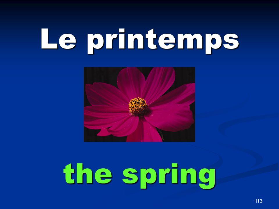 113 Le printemps the spring