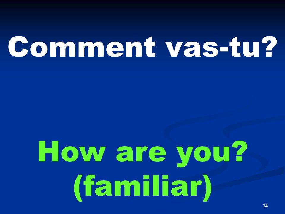 14 Comment vas-tu? How are you? (familiar)