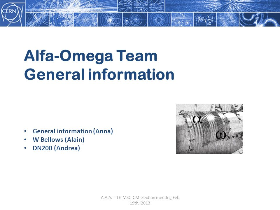 Alfa-Omega Team General information General information (Anna) W Bellows (Alain) DN200 (Andrea) A.A.A.