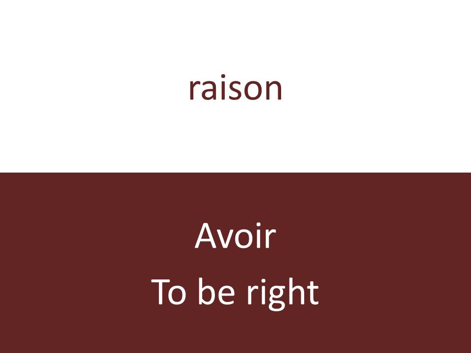 raison Avoir To be right