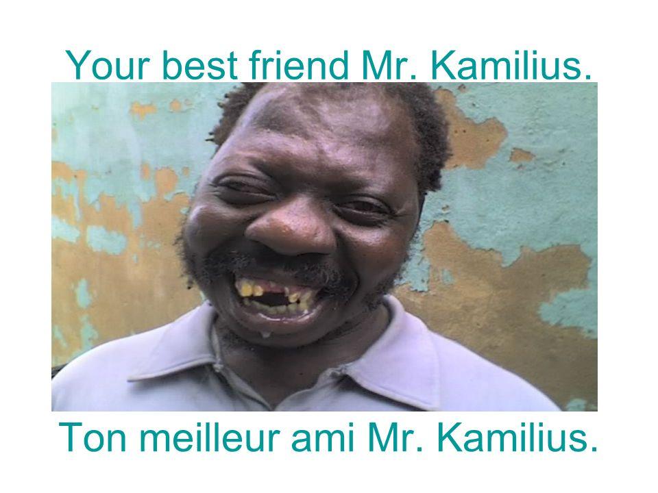 Your best friend Mr. Kamilius. Ton meilleur ami Mr. Kamilius.