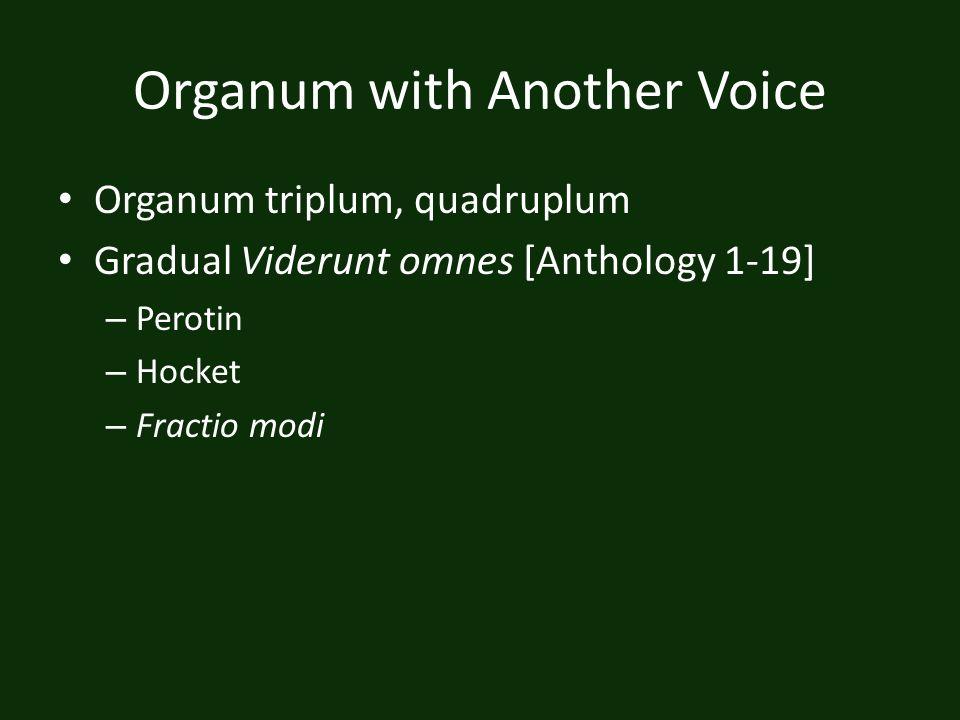 Organum with Another Voice Organum triplum, quadruplum Gradual Viderunt omnes [Anthology 1-19] – Perotin – Hocket – Fractio modi