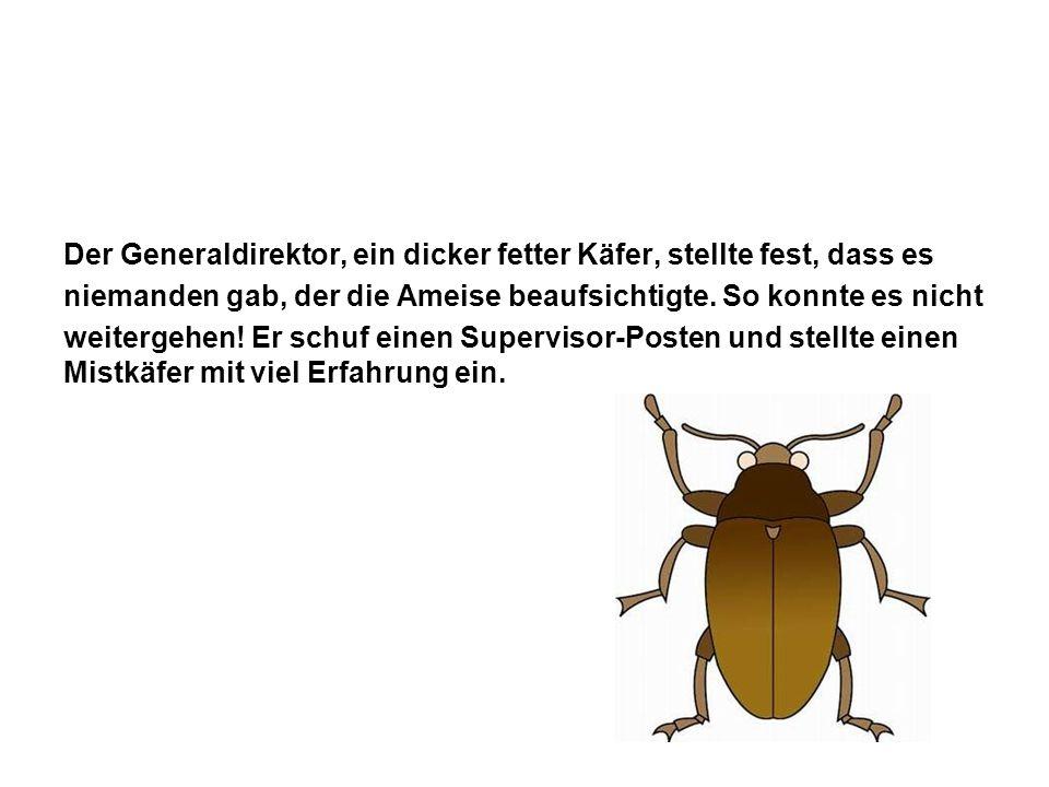 Der Generaldirektor, ein dicker fetter Käfer, stellte fest, dass es niemanden gab, der die Ameise beaufsichtigte.