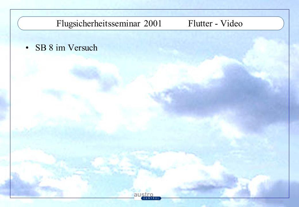Flugsicherheitsseminar 2001Flutter - Video SB 8 im Versuch