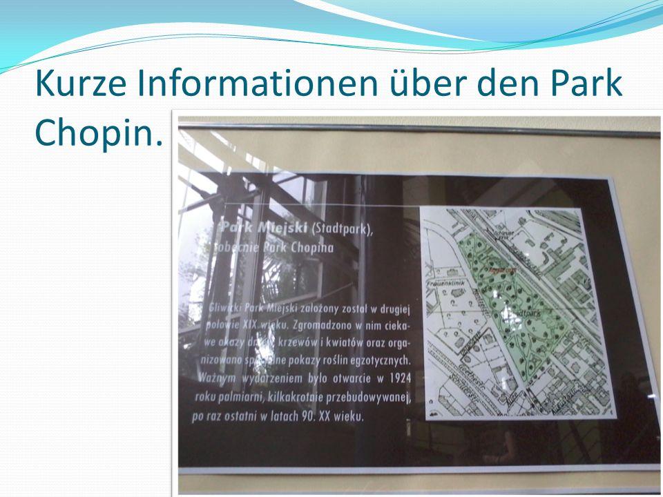 Kurze Informationen über den Park Chopin.