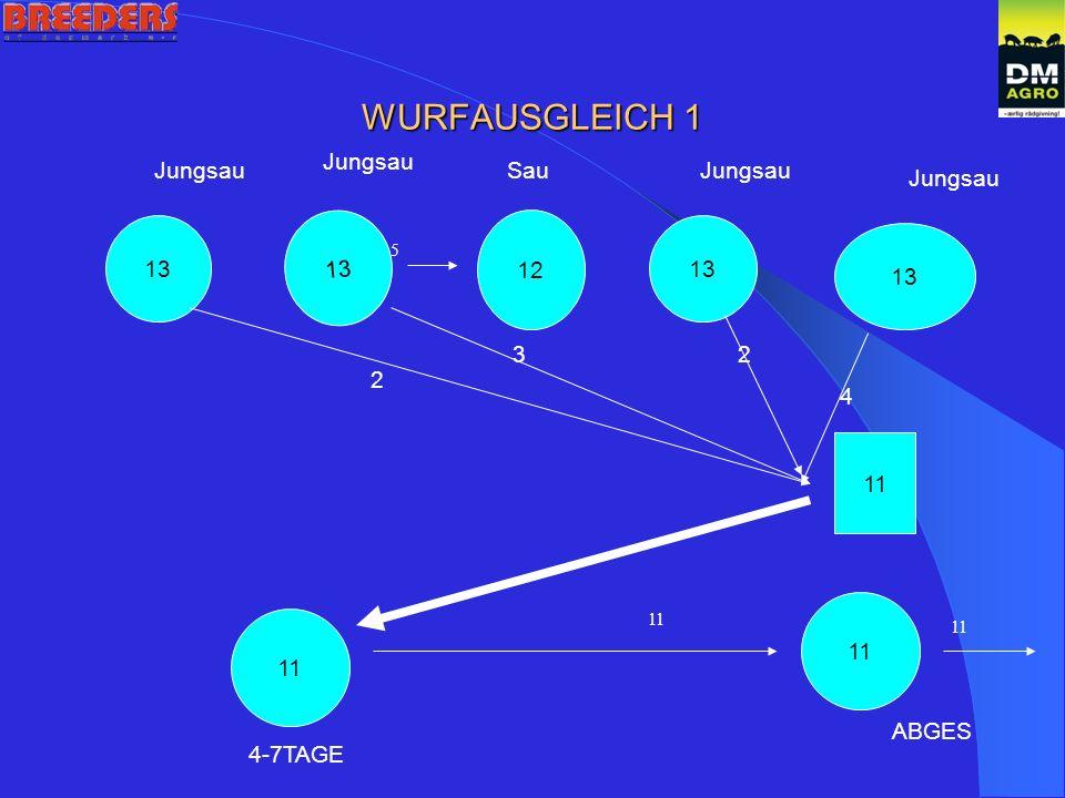 WURFAUSGLEICH 1 13 12 13 2 3 4 2 11 Jungsau SauJungsau 5 11 4-7TAGE ABGES 11