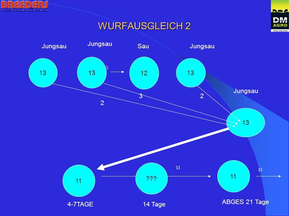 WURFAUSGLEICH 2 13 12 13 2 32 Jungsau SauJungsau 5 11 4-7TAGE ABGES 21 Tage 11 14 Tage