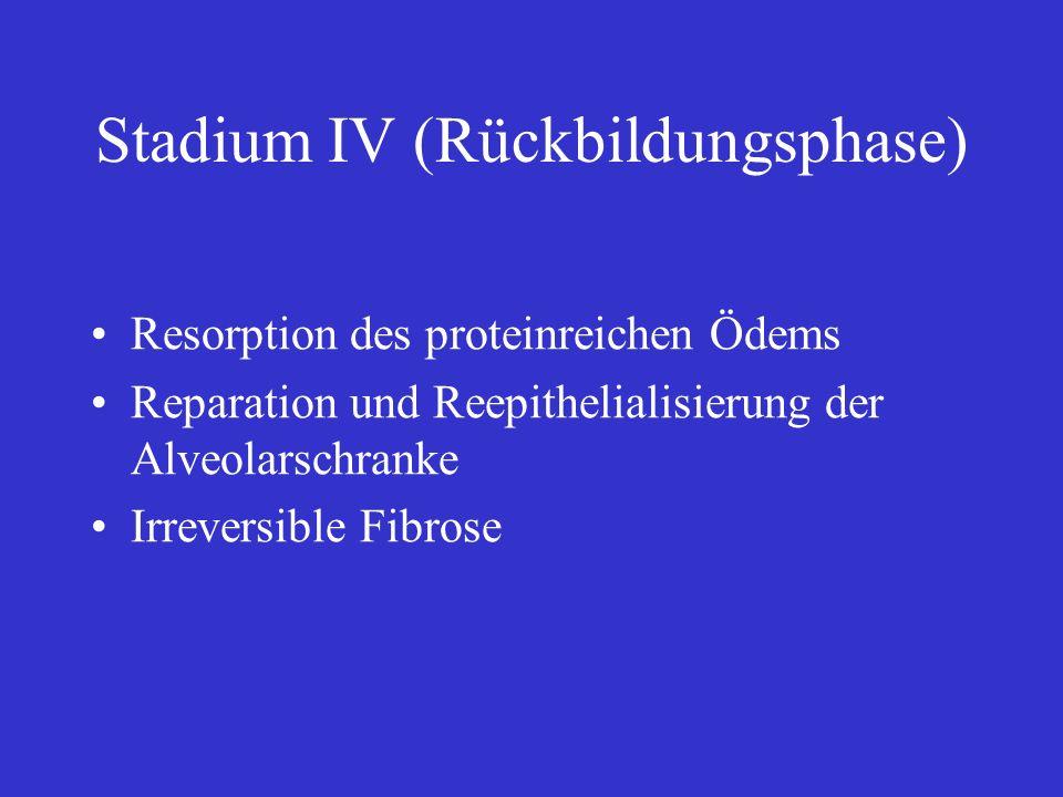 Stadium IV (Rückbildungsphase) Resorption des proteinreichen Ödems Reparation und Reepithelialisierung der Alveolarschranke Irreversible Fibrose