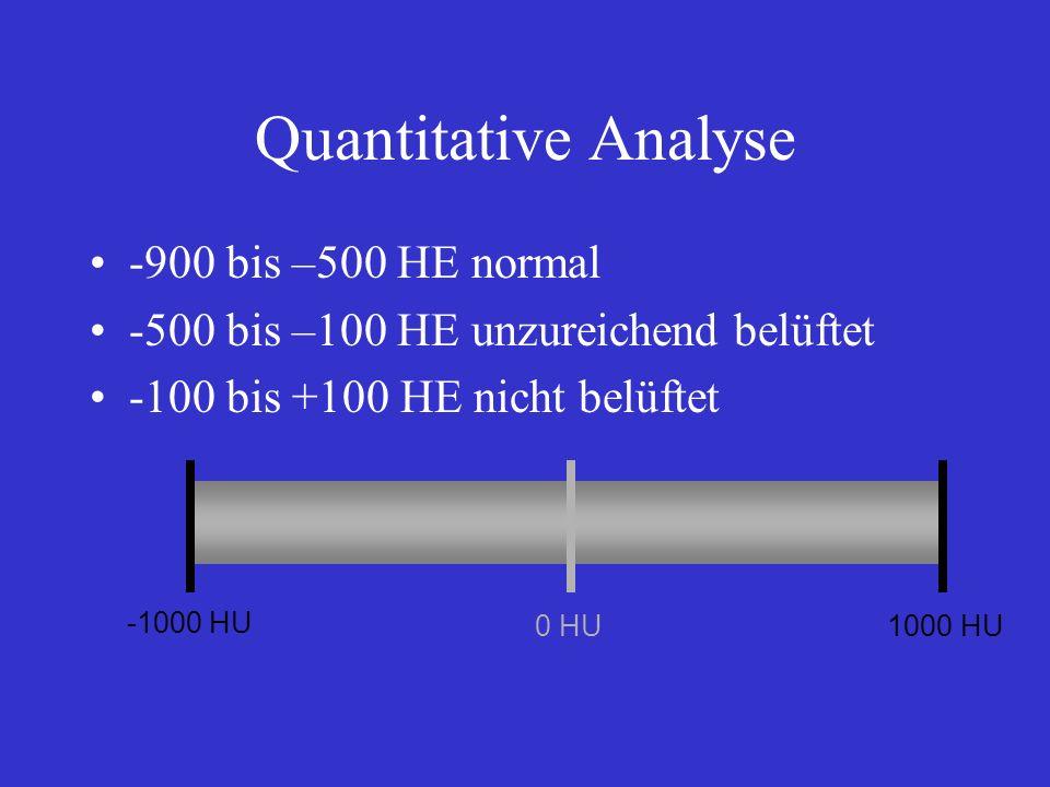 Quantitative Analyse -900 bis –500 HE normal -500 bis –100 HE unzureichend belüftet -100 bis +100 HE nicht belüftet -1000 HU 0 HU1000 HU