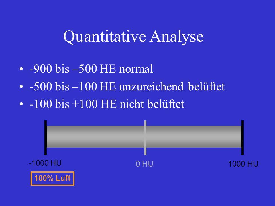 Quantitative Analyse -900 bis –500 HE normal -500 bis –100 HE unzureichend belüftet -100 bis +100 HE nicht belüftet -1000 HU 0 HU1000 HU 100% Luft