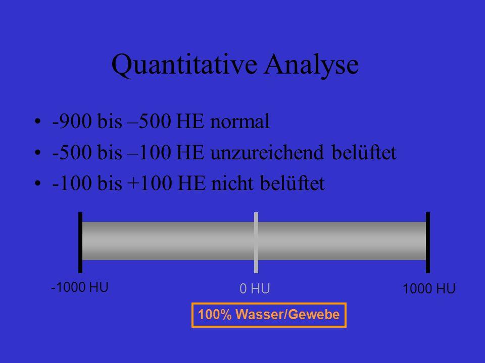 Quantitative Analyse -900 bis –500 HE normal -500 bis –100 HE unzureichend belüftet -100 bis +100 HE nicht belüftet -1000 HU 0 HU1000 HU 100% Wasser/G