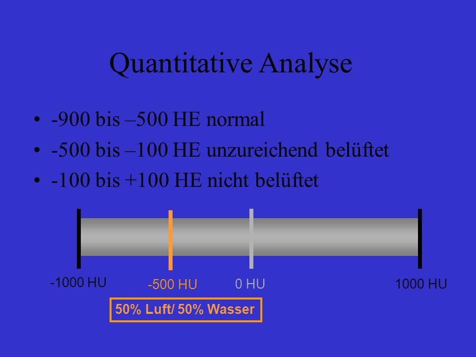 Quantitative Analyse -900 bis –500 HE normal -500 bis –100 HE unzureichend belüftet -100 bis +100 HE nicht belüftet -1000 HU 0 HU1000 HU 50% Luft/ 50%
