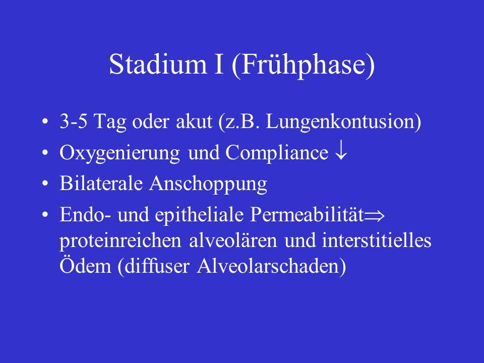Stadium I (Frühphase) 3-5 Tag oder akut (z.B. Lungenkontusion) Oxygenierung und Compliance Bilaterale Anschoppung Endo- und epitheliale Permeabilität