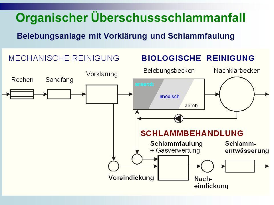 Belebungsanlage mit Vorklärung und Schlammfaulung Organischer Überschussschlammanfall