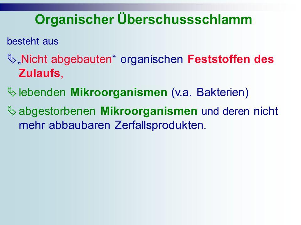 besteht aus Nicht abgebauten organischen Feststoffen des Zulaufs, lebenden Mikroorganismen (v.a. Bakterien) abgestorbenen Mikroorganismen und deren ni