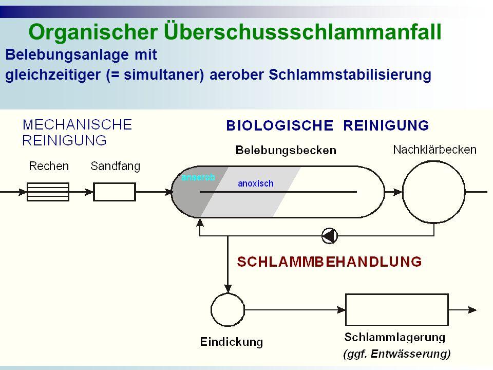 Belebungsanlage mit gleichzeitiger (= simultaner) aerober Schlammstabilisierung Organischer Überschussschlammanfall