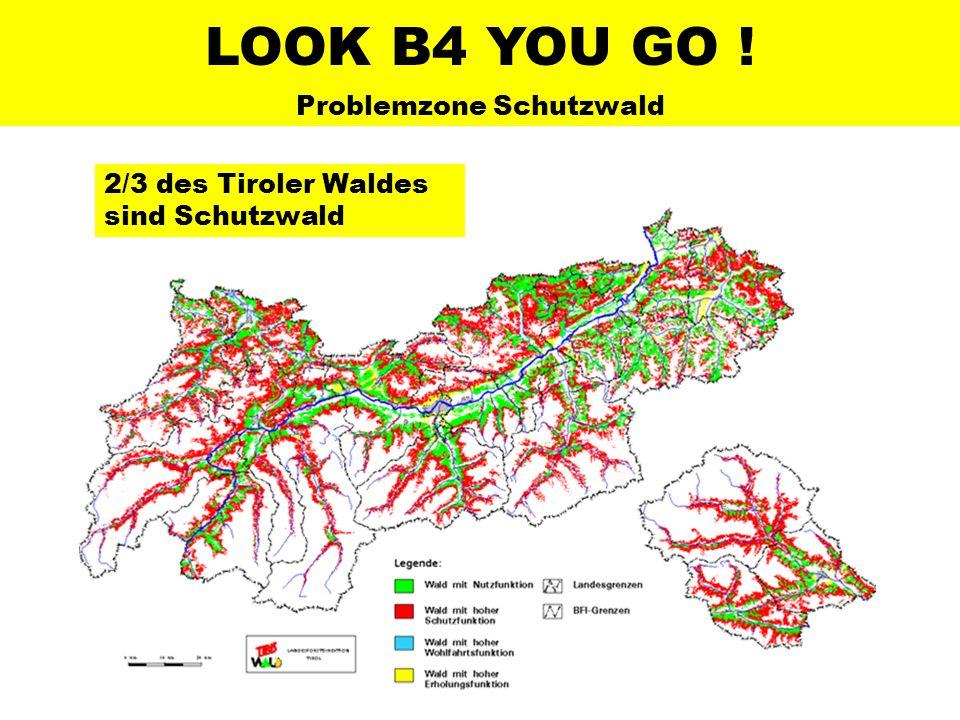 LOOK B4 YOU GO ! Problemzone Schutzwald 2/3 des Tiroler Waldes sind Schutzwald