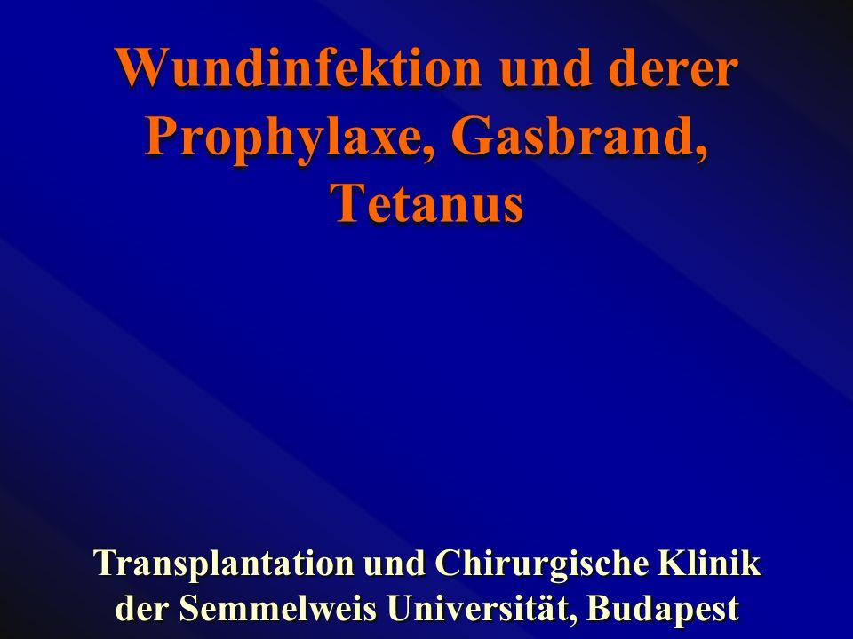 Wundinfektion und derer Prophylaxe, Gasbrand, Tetanus Transplantation und Chirurgische Klinik der Semmelweis Universität, Budapest