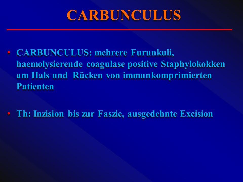 CARBUNCULUS: mehrere Furunkuli, haemolysierende coagulase positive Staphylokokken am Hals und Rücken von immunkomprimierten Patienten Th: Inzision bis