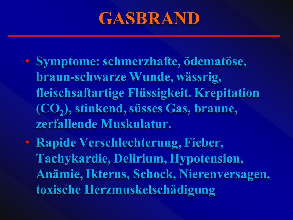 Symptome: schmerzhafte, ödematöse, braun-schwarze Wunde, wässrig, fleischsaftartige Flüssigkeit. Krepitation (CO 2 ), stinkend, süsses Gas, braune, ze