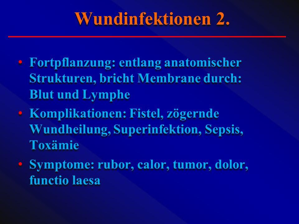 Fortpflanzung: entlang anatomischer Strukturen, bricht Membrane durch: Blut und Lymphe Komplikationen: Fistel, zögernde Wundheilung, Superinfektion, S