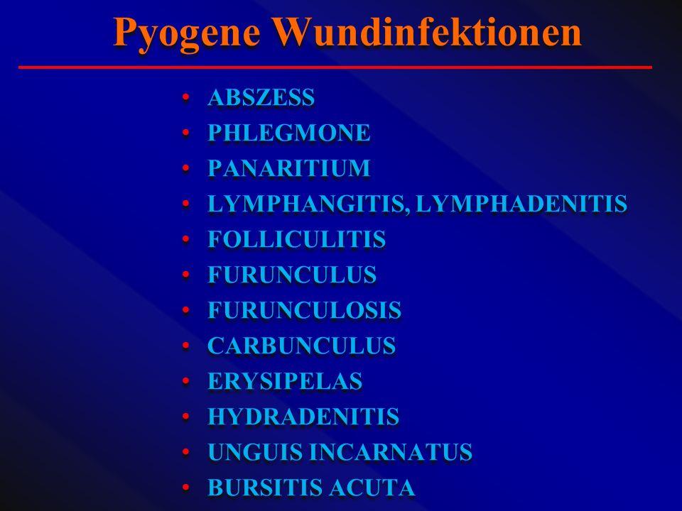 ABSZESS PHLEGMONE PANARITIUM LYMPHANGITIS, LYMPHADENITIS FOLLICULITIS FURUNCULUS FURUNCULOSIS CARBUNCULUS ERYSIPELAS HYDRADENITIS UNGUIS INCARNATUS BU