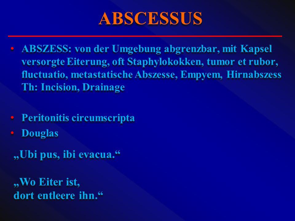 ABSZESS: von der Umgebung abgrenzbar, mit Kapsel versorgte Eiterung, oft Staphylokokken, tumor et rubor, fluctuatio, metastatische Abszesse, Empyem, H