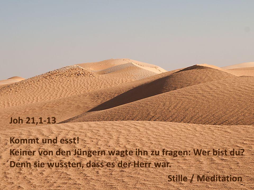 Joh 21,1-13 Kommt und esst. Keiner von den Jüngern wagte ihn zu fragen: Wer bist du.