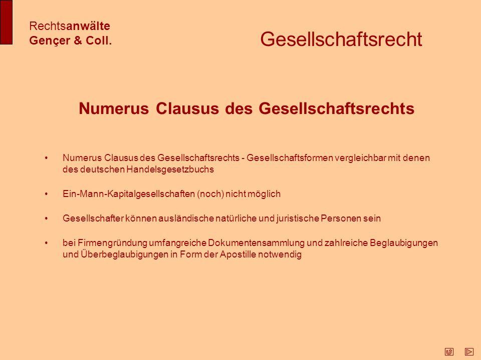Aktiengesellschaft (Anonim Şirketi - A.Ş.) - Gesellschaft mit begrenzter Haftung (Ltd.