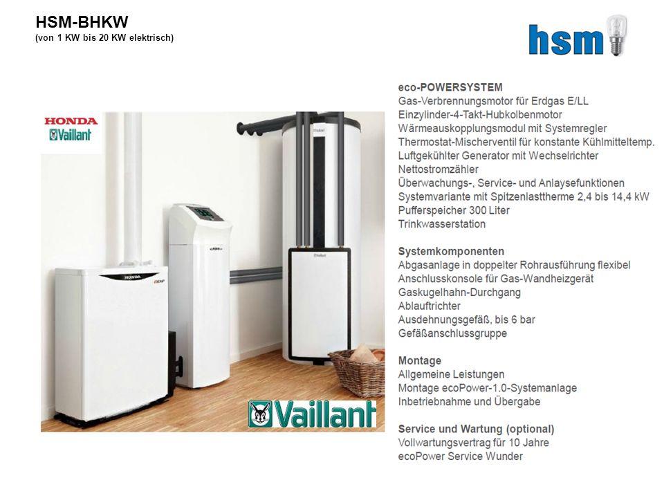 HSM-BHKW (von 1 KW bis 20 KW elektrisch)