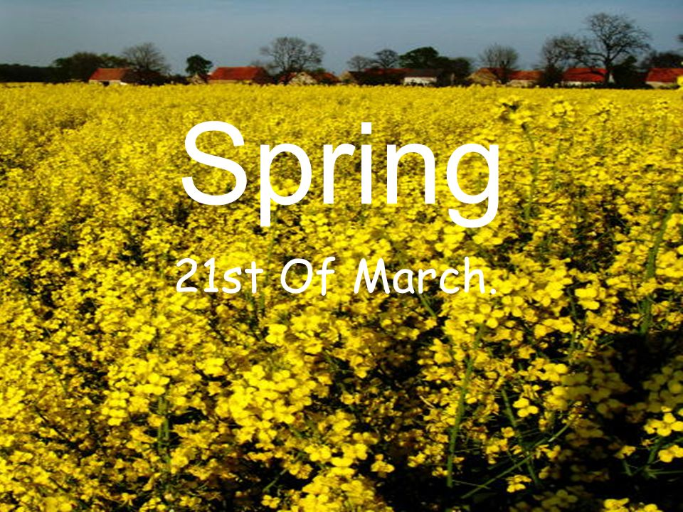 Spring can be: Sunny Rainy Warm Cold Cloud y Windy Thawing